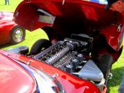 jaguar12t.jpg