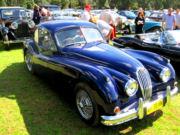 jaguar19t.jpg