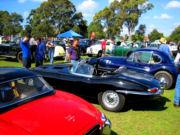 jaguar24t.jpg