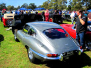 jaguar29t.jpg