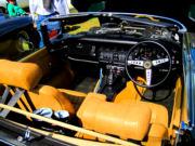 jaguar33t.jpg