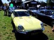 jaguar34t.jpg
