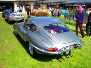jaguar39t.jpg
