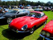 jaguar3t.jpg