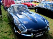 jaguar42t.jpg