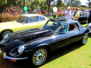 jaguar44t.jpg