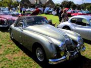 jaguar52t.jpg
