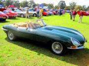 jaguar5t.jpg