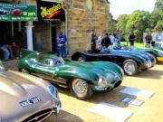 jaguar61t.jpg