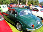 jaguar7t.jpg